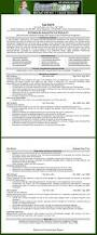 Executive Level Resume Samples by 19 Best Resume Images On Pinterest Resume Ideas Resume Cover