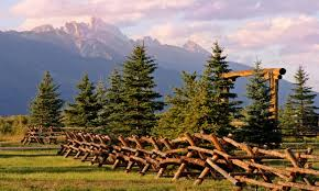 Wyoming nature activities images Things to do in jackson hole wyoming alltrips jpg