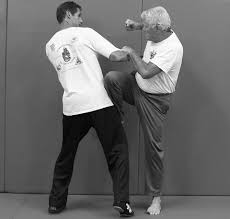 jun fan gung fu seeking the path of jeet kune do 2 home facebook