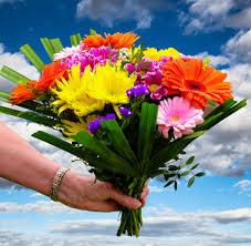 s day floral arrangements free images sky meadow gift color botany colorful