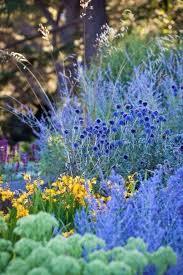 205 best garden stuff images on pinterest flowers flower