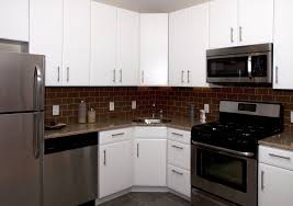 Euro Design Kitchen by Apartment Kitchen Cabinet Ideas Acacia Cabinetworks