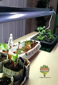 growing herbs indoors under lights grow lights indoor garden indoor plant grow lights plant lights home