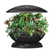 garden u0026 landscaping awesome led kitchen garden chili lifestyle