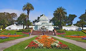 conservatory of flowers in golden gate park pictures and history