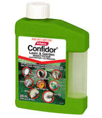 bayer confidor garden insecticide concentrate yates products
