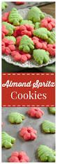 best 25 spritz cookie press ideas on pinterest spritz cookies