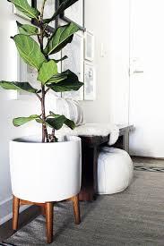 Unique Plant Pots Plant Stand 48 Astounding Unique Plant Holders Image
