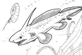 pleuracanthus prehistoric shark coloring free printable
