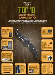 Warm Situation Top 10 Uses For Knives In A Survival Situation Visual Ly