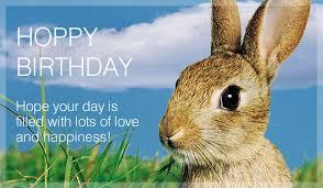 rabbit birthday happy birthday bam binkybunny house rabbit information