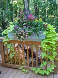 deck railing planter boxes plans plantings 2017 pinterest