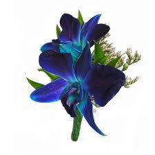 blue boutonniere blue dendrobium orchid boutonniere cbbpas05 flower patch