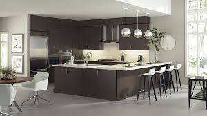 Studio 41 Kitchen Cabinets Refacing Kitchen Cabinets Before And After U2014 Desjar Interior
