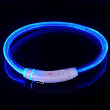 Amazon Com Led Dog Necklace Collar Usb Rechargeable Safety