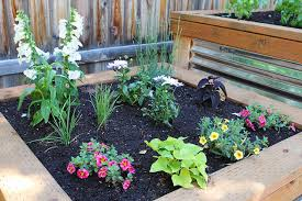how to build an herb garden raised herb garden two peas their pod