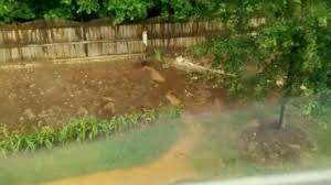 storm drainage in dry creekbed from second floor youtube