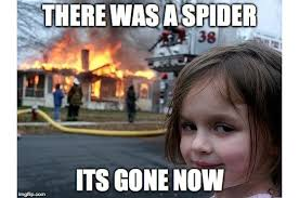 Girl Meme - disaster girl meme zoe roth now