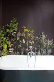 taux d humidité chambre bebe plante interieure fleurie pour taux d humidité chambre bebe frais