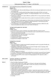 marketing trainee resume samples velvet jobs