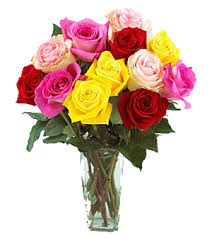 send flower flowers tunisia free delivery send flower to tunisia florist shop
