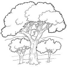 Oak Tree In The Forest Coloring Page Color Luna Tree Coloring Pages