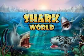 shark apk shark world apk free for android