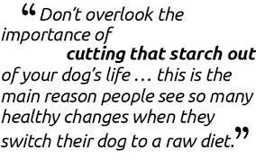 how to make raw dog food