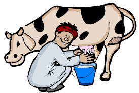 pictures of cow free download clip art free clip art on