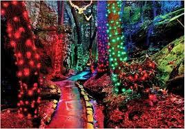 The Enchanted Rock Garden Rock City S Enchanted Garden Of Lights