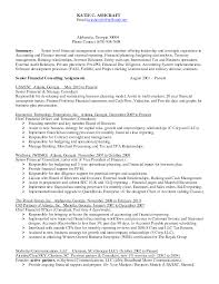 Senior Finance Executive Resume Clinical Auditor Sample Resume Agenda Template Doc