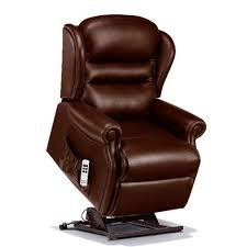 Recliner Chairs For Riser Recliner Chairs Chairs For The Elderly Recliner Chairs