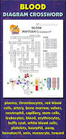 digestive system diagram crossword answers periodic tables