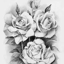 41 best flowers images on pinterest drawings flowers and