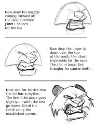 how to draw lesson 07 how to draw a tiger