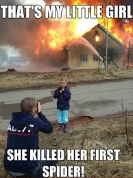 I Tried Killing A Spider - 20 funny quotes and funniest pics funny quotes humor and dads