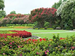 Botanical Gardens Dallas by Texas Must See A Day At The Dallas Arboretum In Chief