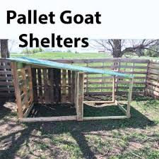 diy easy free goat house with pictures goat shelter shelters