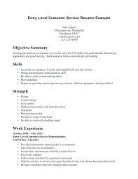 entry level customer service resume u2013 inssite