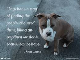 grieving the loss of a pet quote thom jones dogs a way of find your tribute