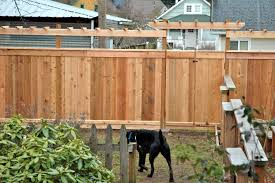 pictures of trellis fencing home