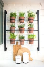 kitchen herb garden ideas outdoor herb garden planters best herb wall ideas on kitchen herbs