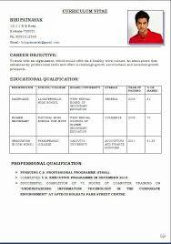Resume Format Example by Download Format Of Resume Haadyaooverbayresort Com