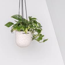 Hanging Plant Stak Ceramics Black On White Dot Hanging Planter U2014 Stak Ceramics