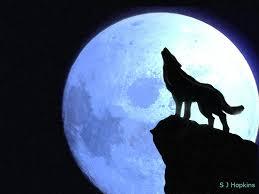 lobos moon drawing wolf and moon