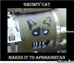 Grumpy Cat Meme Images - grumpy cat goes to afghanistan navy memes clean mandatory fun
