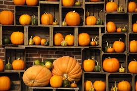 autumn pumpkin wallpaper widescreen pretty autumn pumpkin wallpaper