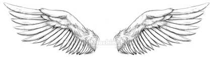 feathers wings design for sleeve