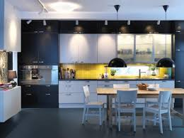 Ikea Kitchens Design by 11 Amazing Ikea Kitchen Designs Kitchens Tiny Houses And House