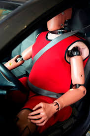 fat crash test dummies that weigh 19 stone rolled out to represent